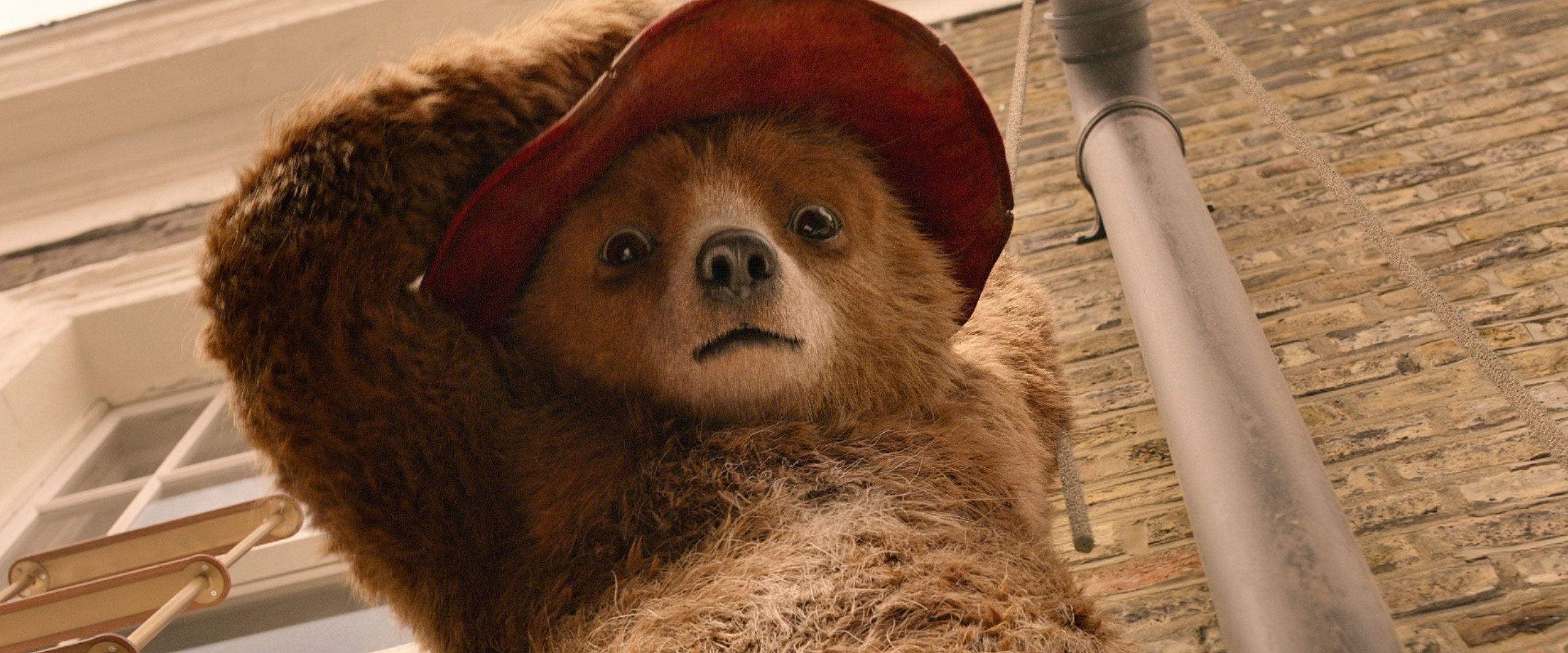 Paddington 3 release date, cast, plot