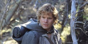 Sean Astin, Samwise Gamgee, Lord of the Rings