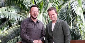 Anthony McPartlin, Declan Donnelly, I'm A Celebrity 2017 presenters
