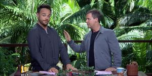 Ant and Dec, make fun of rehab, I'm A Celebrity