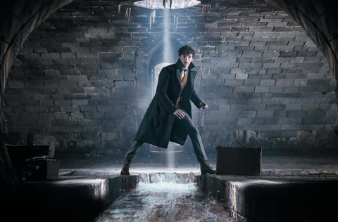 Fantastic Beasts 2 new photos - Newt gets a postcard from Paris in new look at The Crimes of Grindelwald