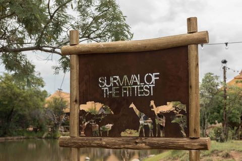 EMBARGO 09/02/2018 22:30PM, ITV2 Survival of the Fittest - Welcome to The Lodge!