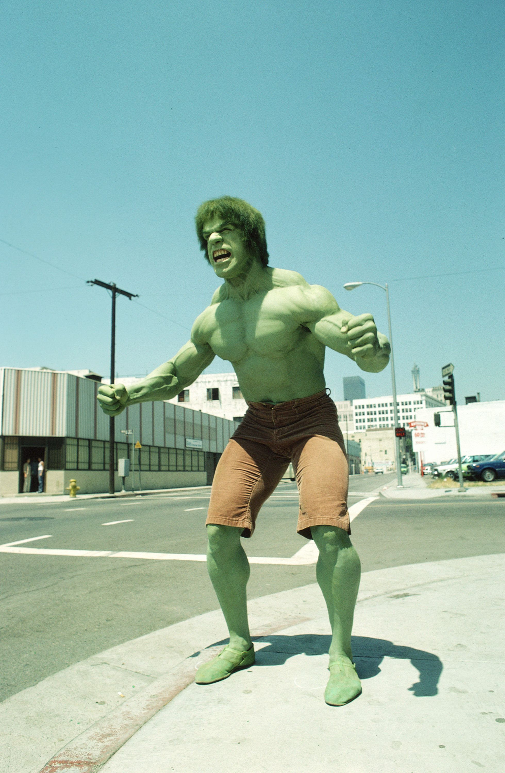 14 Hilarious Reasons Why The Hulk Hulk Ed Out In The Classic Tv Show