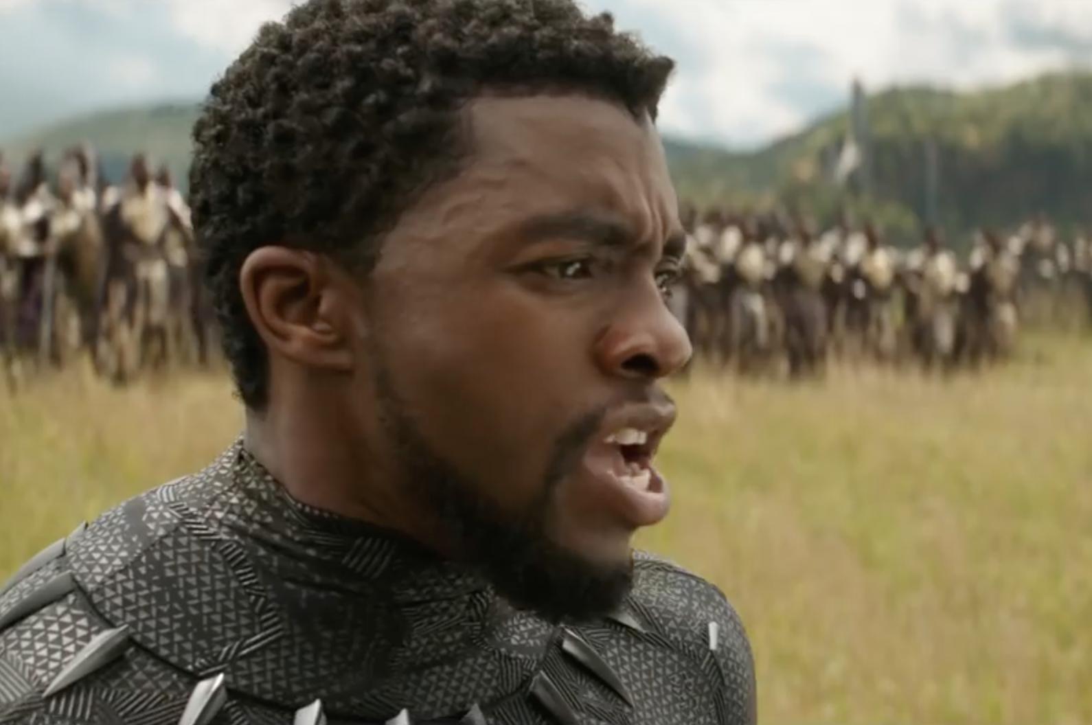 Black Panther in Avengers: Infinity War teaser (April 8)