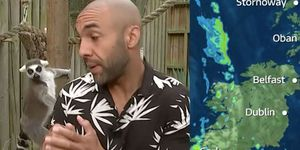 Good Morning Britain's Alex Beresford