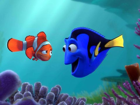Finding Nemo Marlin and Dory
