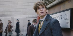 Eddie Redmayne, Newt Scamander, Fantastic Beasts: The Crimes of Grindelwald