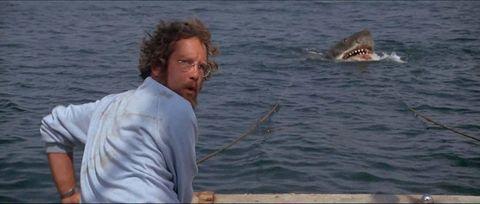 Richard Dreyfuss in Jaws