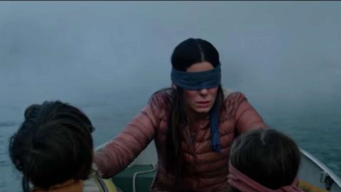 bird box on netflix differences from the book