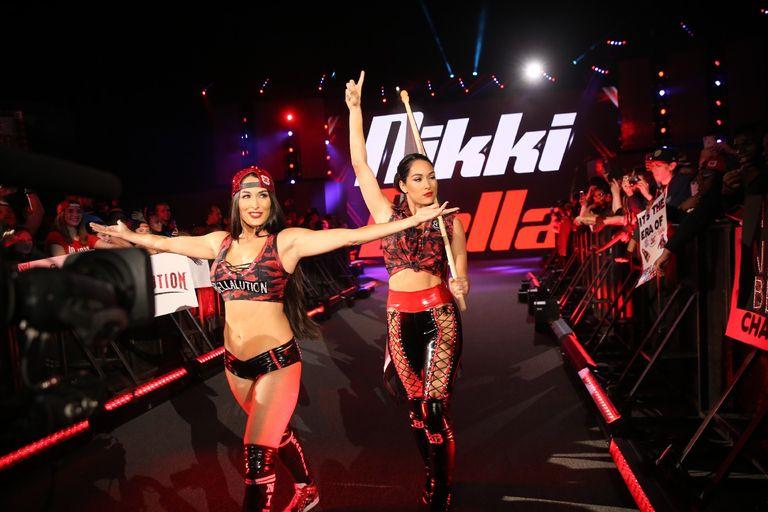 Ronda Rousey (c) vs Nikki Bella for the Raw Women's at WWE's Women's Evolution
