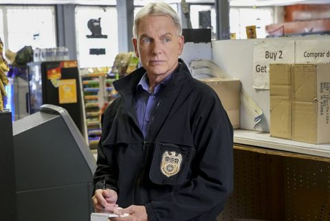 NCIS season 17 - Cast, air date, episodes, spoilers and everything
