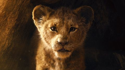 the lion king live action, disney poster