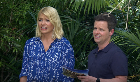 Declan Donnelly says people who put pineapple on pizza are perverts - I'm A Celeb
