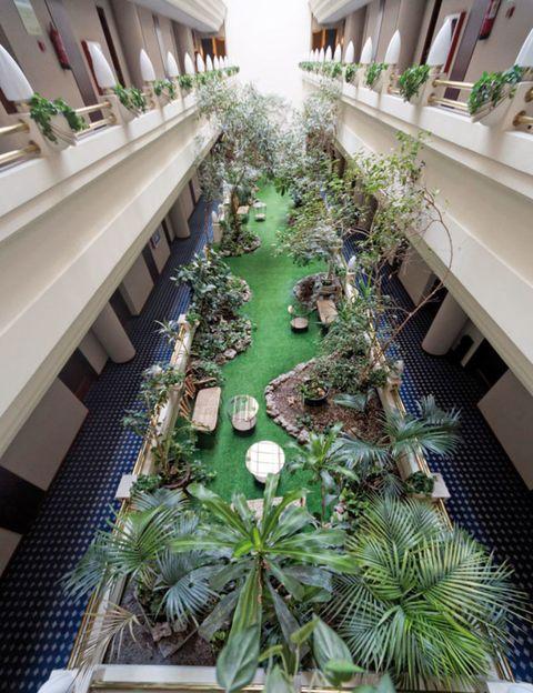 Green, Leaf, Real estate, Design, Shelf, Flowerpot, Arcade, Fruit, Aisle, Shelving,