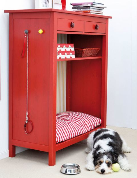 Room, Carnivore, Red, Floor, Dog, Dog breed, Bed, Maroon, Gas, Fur,