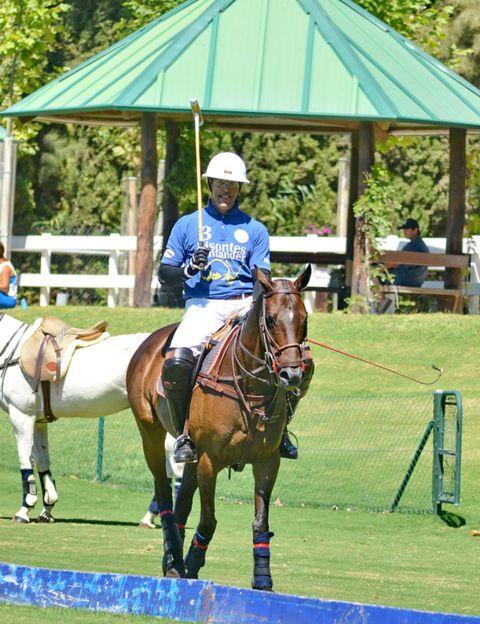 Human, Bridle, Halter, Horse supplies, Rein, Shoe, Horse, Vertebrate, Horse tack, Jockey,