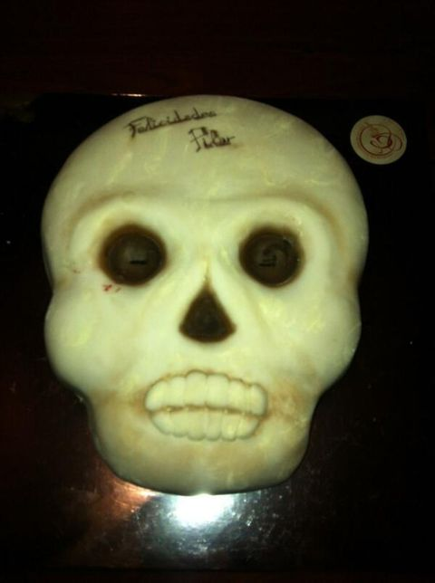 Forehead, Bone, Jaw, Skull, Tooth, Symmetry, Anthropology, Collection, Artifact,