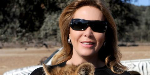 Eyewear, Glasses, Vision care, Skin, Sunglasses, Big cats, Felidae, Facial expression, Whiskers, Jaw,