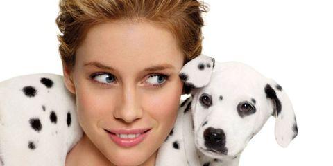 Lip, Hairstyle, Skin, Eye, Eyebrow, Eyelash, Dog, White, Dog breed, Carnivore,