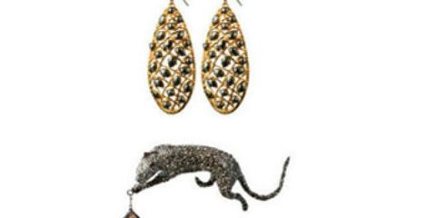 Metal, Beige, Natural material, Earrings, Tail, Body jewelry, Bracelet, Pet supply, Fruit, Cat supply,