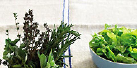 Ingredient, Leaf, Flowerpot, Herb, Leaf vegetable, Interior design, Houseplant, Annual plant, Vegetable, Produce,