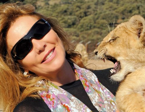 Eyewear, Nose, Glasses, Vision care, Lion, Goggles, Skin, Sunglasses, Big cats, Happy,