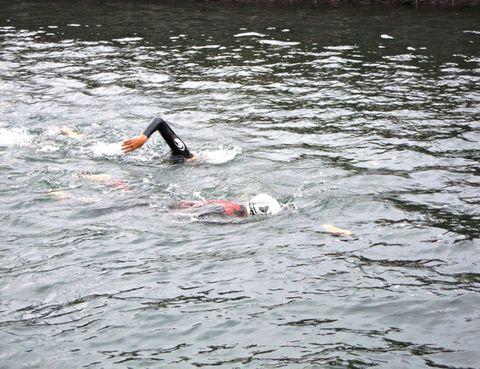 Fluid, Endurance sports, Swimmer, Outdoor recreation, Liquid, Open water swimming, Muscle, Freestyle swimming, Quadrathlon, Individual sports,
