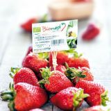 Food, Fruit, Sweetness, Natural foods, White, Produce, Strawberry, Strawberries, Carmine, Accessory fruit,