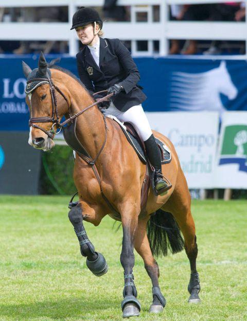 Human, Halter, Bridle, Horse supplies, Vertebrate, Shoe, English riding, Horse tack, Equestrian sport, Riding boot,