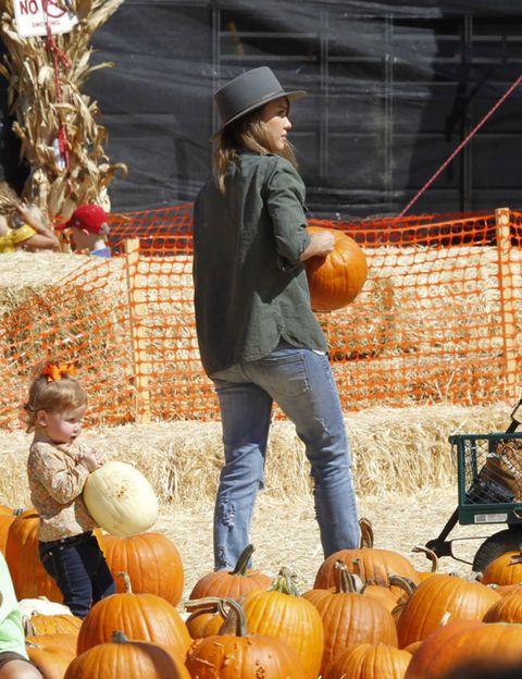 Squash, Calabaza, Vegetable, Local food, Whole food, Natural foods, Produce, Pumpkin, Winter squash, Vegan nutrition,