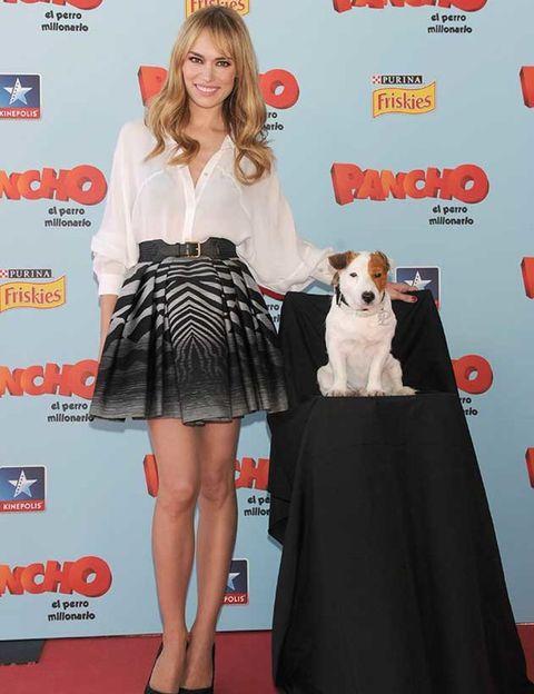 Red, Flooring, Dress, Style, Toy, Carnivore, Carpet, Dog breed, Dog, Fashion,