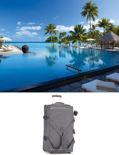 Collar, Swimming pool, Reflection, Azure, Resort, Arecales, Aqua, Tropics, Pocket, Palm tree,