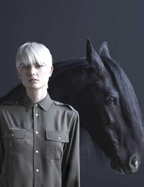 Collar, Dress shirt, Horse, Style, Jaw, Monochrome photography, Darkness, Working animal, Grey, Monochrome,