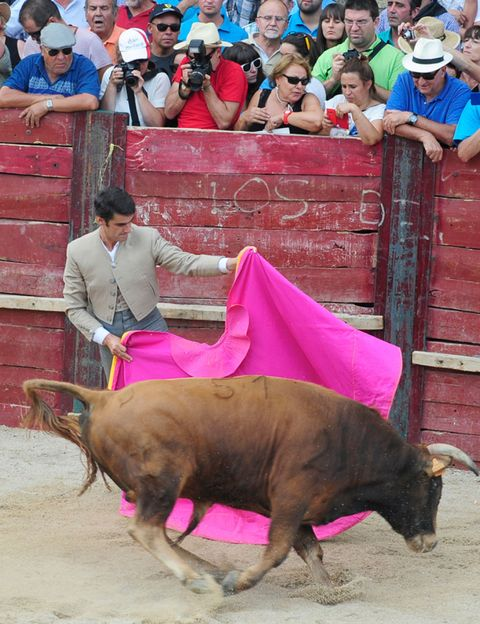 Human, People, Bull, Vertebrate, Organism, Bullring, Magenta, Mammal, Pink, Purple,