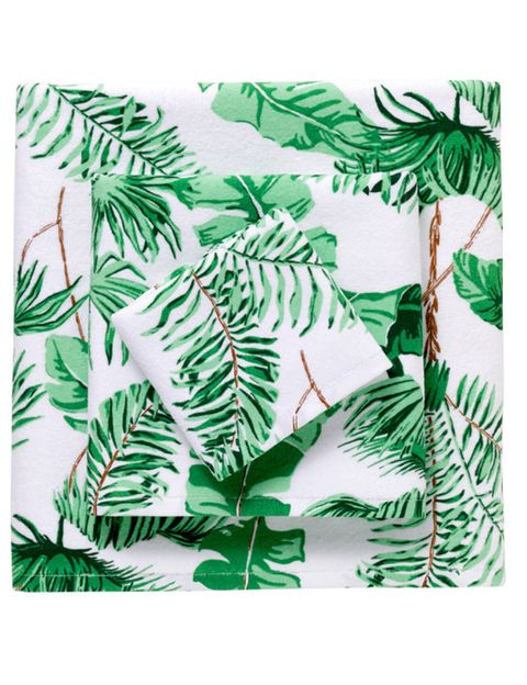Organism, Leaf, Botany, Terrestrial plant, Art, Illustration, Twig, Vascular plant, Painting, Plant stem,