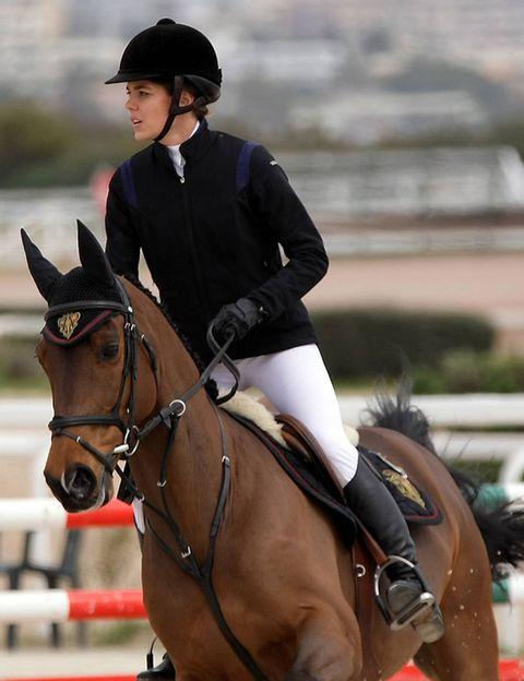 Halter, Bridle, Equestrian helmet, Vertebrate, Recreation, Jockey, Helmet, English riding, Equestrian sport, Horse supplies,