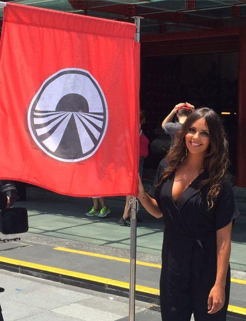 Flag, Logo, Banner, Symbol, Baggage,