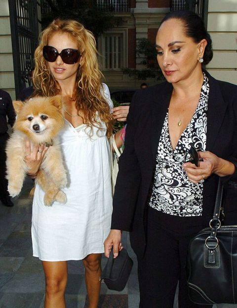 Clothing, Dog breed, Outerwear, Dog, Carnivore, Coat, Fashion accessory, Style, Bag, Sunglasses,