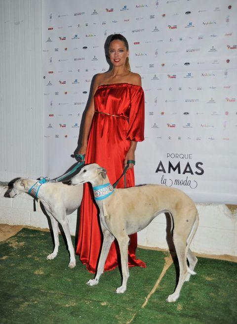 Human, Dog, Dog breed, Carnivore, Sighthound, Dress, Companion dog, Whippet, Magyar agár, One-piece garment,