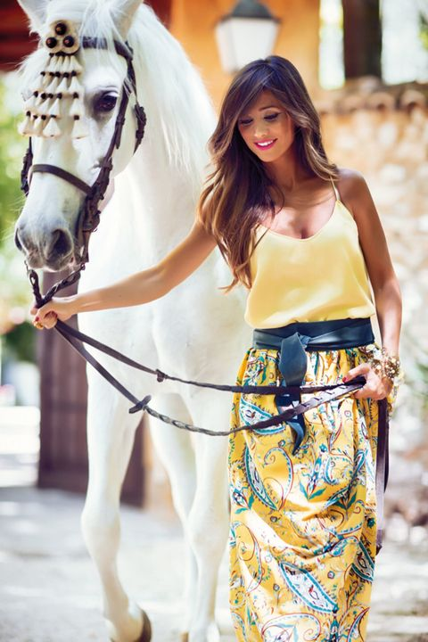 Horse supplies, Bridle, Halter, Horse, Rein, Horse tack, Bag, Working animal, Style, People in nature,