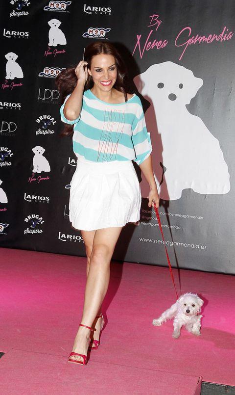 Red, Carnivore, Style, Flooring, Dog breed, Dog, Fashion accessory, Fashion, Street fashion, Toy dog,