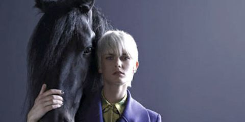 Collar, Sleeve, Coat, Horse, Outerwear, Dress shirt, Style, Formal wear, Blazer, Working animal,