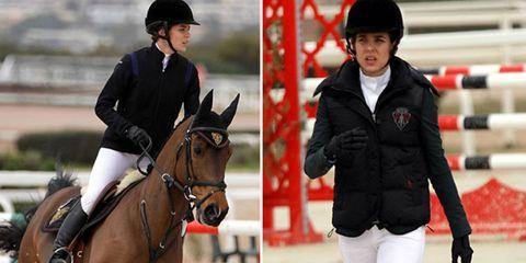 Halter, Bridle, Vertebrate, Equestrian helmet, Horse supplies, Recreation, Horse tack, English riding, Equestrian sport, Horse,