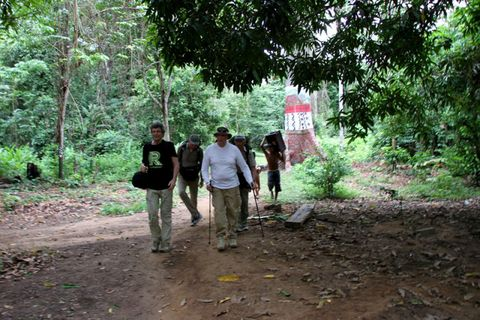 Soil, Adaptation, Woody plant, Forest, Nature reserve, Rural area, Jungle, Trail, Woodland, Rainforest,