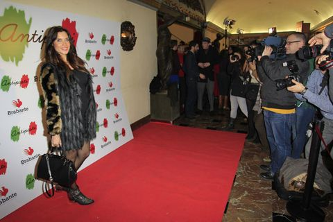 Flooring, Carpet, Luggage and bags, Video camera, Camera, Red carpet, Fur, Camera operator, Long hair, Hall,