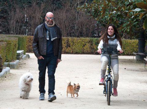 Human, Dog breed, Bicycle wheel, Vertebrate, Dog, Carnivore, Mammal, Bicycle frame, Bicycle, Sporting Group,