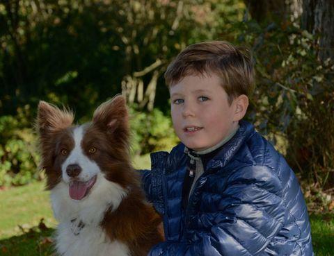 Dog breed, Jacket, Dog, Iris, Carnivore, Liver, Sporting Group, Fur, Companion dog, Brown hair,
