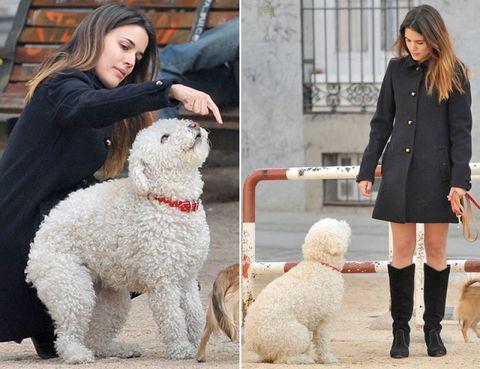 Human, Vertebrate, Dog, Organism, Dog breed, Textile, Carnivore, Outerwear, Mammal, Coat,