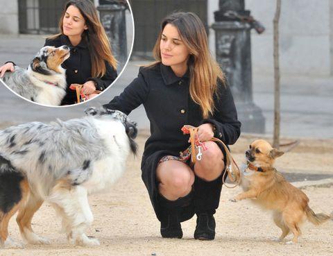 Human, Dog breed, Vertebrate, Dog, Mammal, Carnivore, Interaction, Sporting Group, Snout, Companion dog,