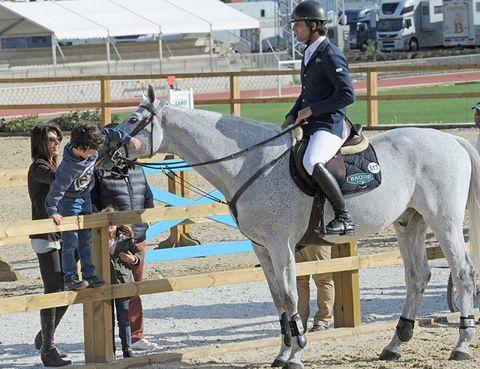 Footwear, Human, Halter, Bridle, Horse supplies, Shoe, Vertebrate, Horse, Horse tack, Rein,